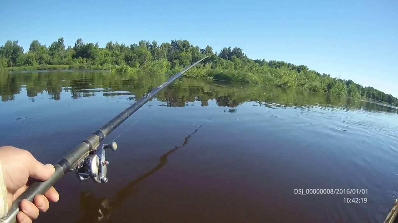 Рыбалка в окрестностях мурома — что нужно знать?