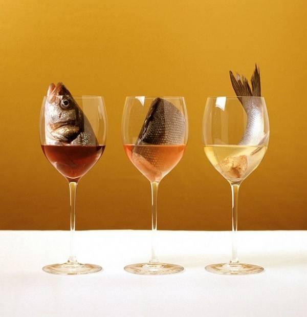 Какое вино лучше всего под рыбу — советы кулинаров