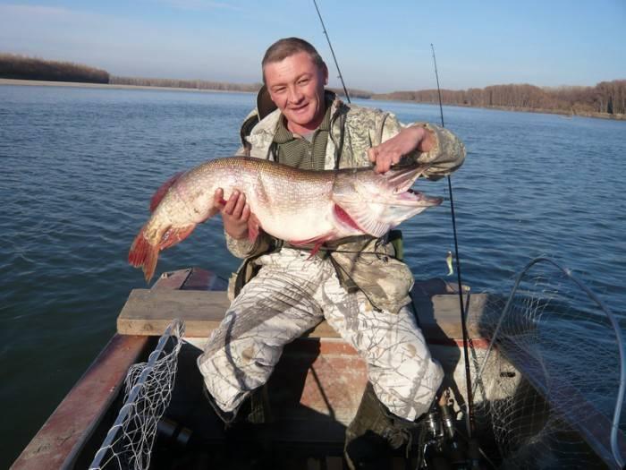 Рыбалка в новосибирске: вести с водоемов