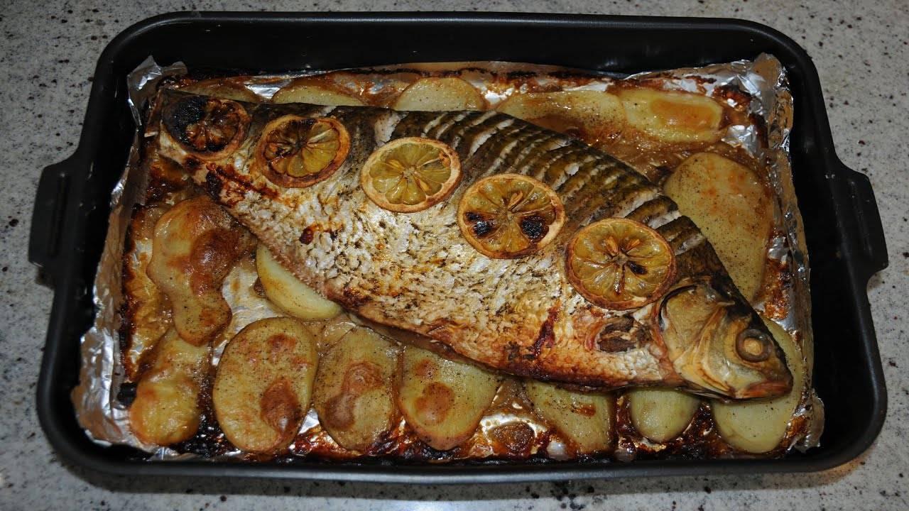 Сазан в духовке - рецепты в фольге и в рукаве, с картошкой, овощами и в сметане. как вкусно приготовить сазана в духовке целиком и кусочками?