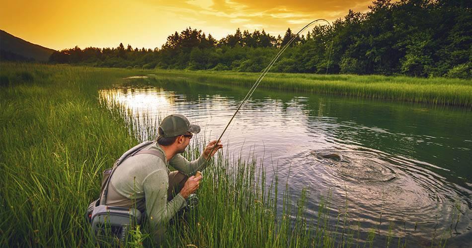Полезные советы бывалых рыбаков начинающим