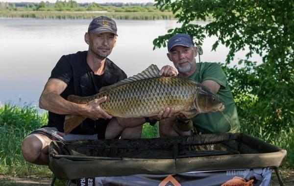 Рыбалка на бесплатных прудах в воронежской области – суперулов – интернет-портал о рыбалке