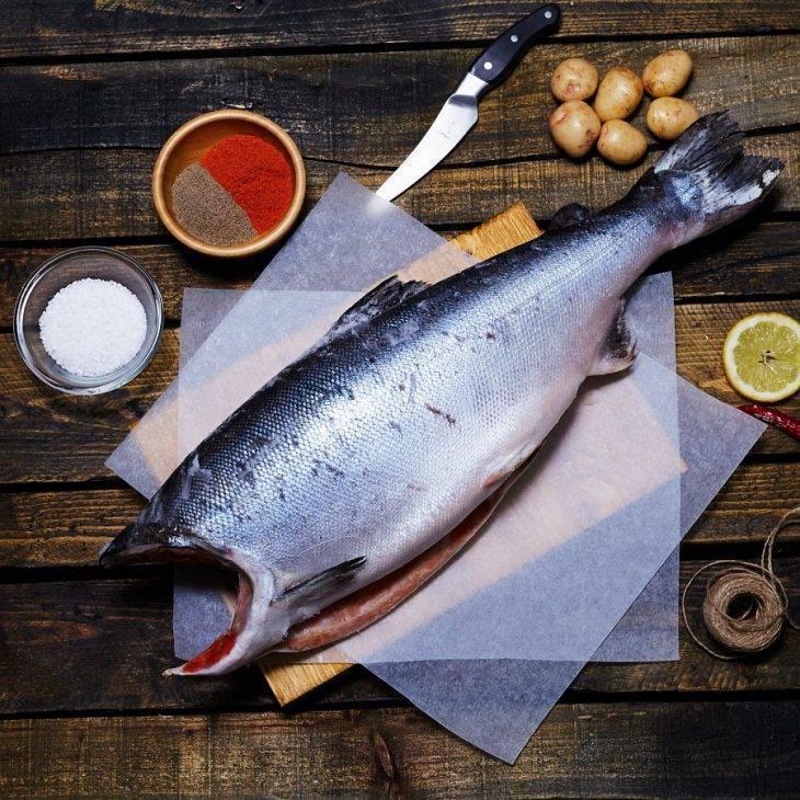 Рыба семейства лососевых - кижуч, чавыча, кета, горбуша, семга, форель
