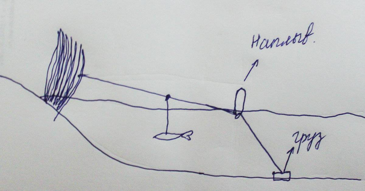 Ловля сома на донку с берега - как сделать донную снасть своими руками и правила ловли