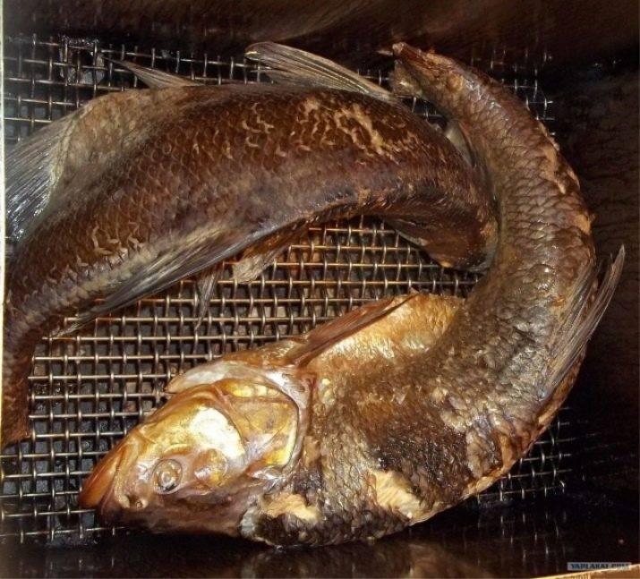 Сколько и как хранить копченую рыбу в домашних условиях