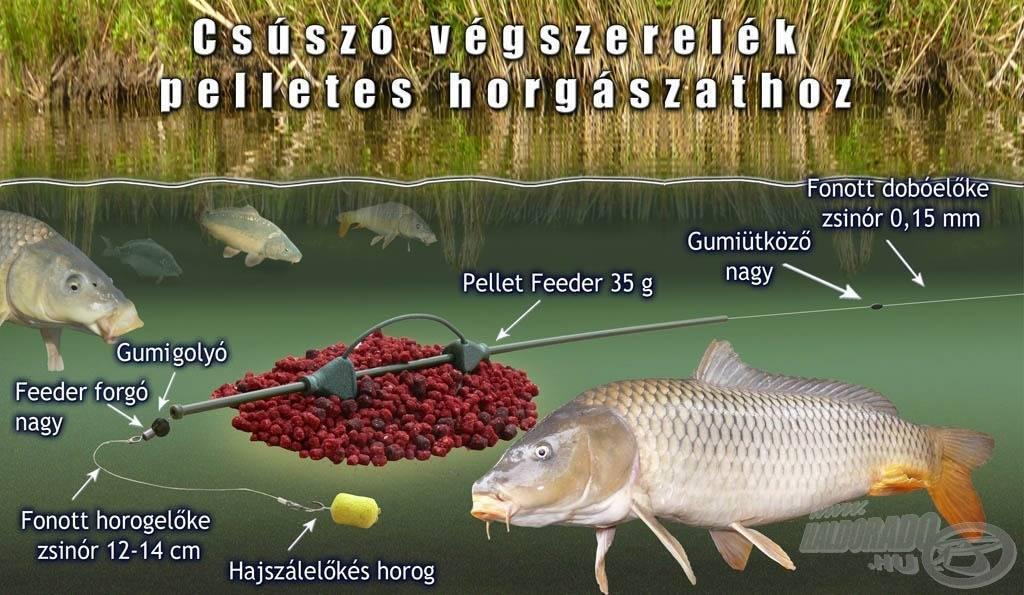 Пеллетс для рыбалки: что это такое и как сделать своими руками