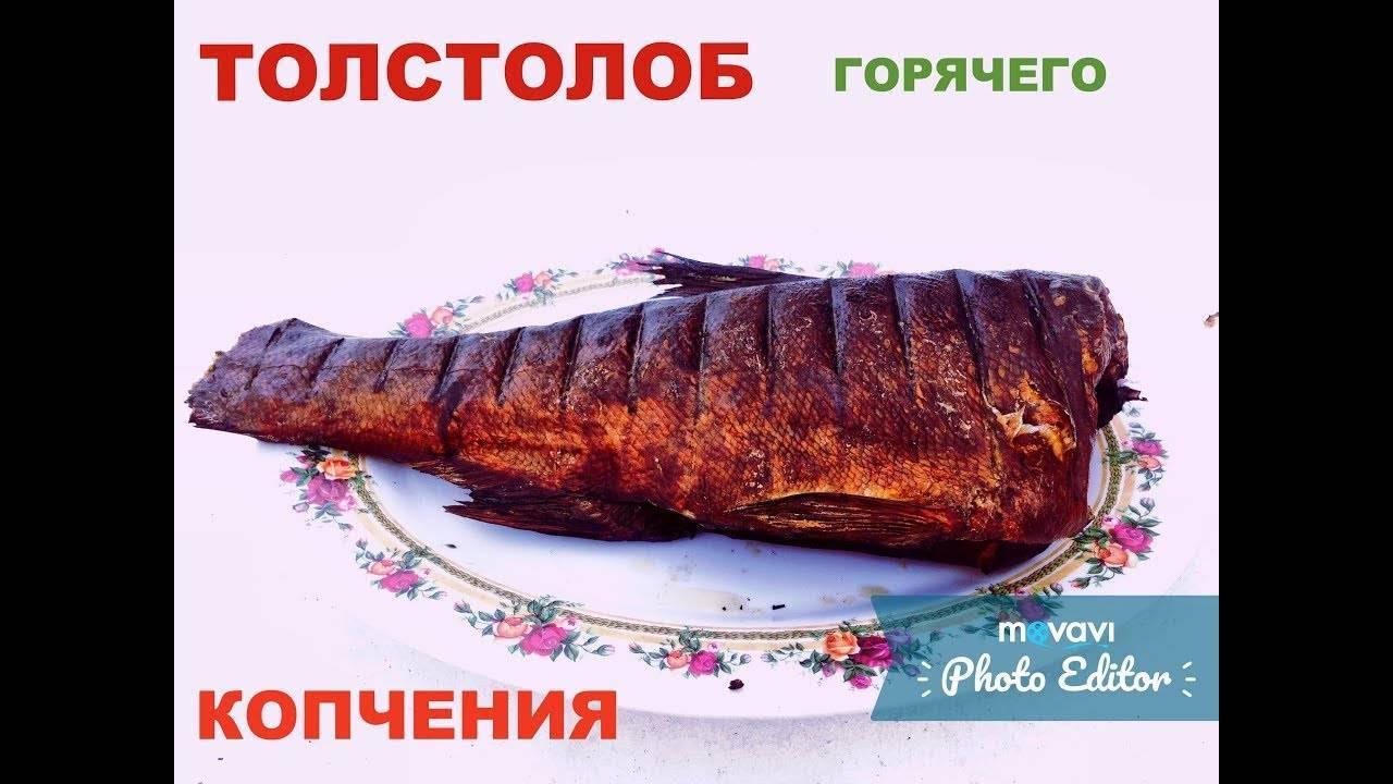Камбала горячего и холодного копчения: калорийность, рецепт приготовления