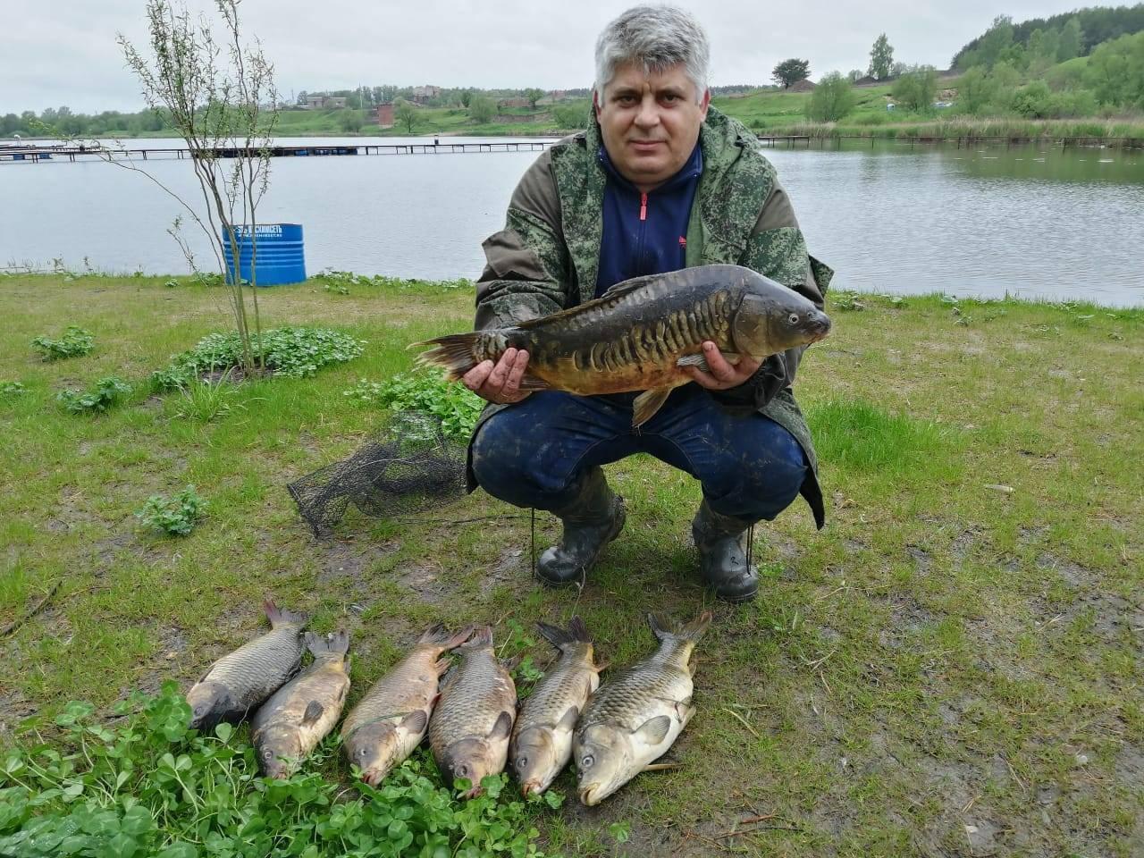 Обзор платных и бесплатных мест для рыбалки в брянске и брянской области | berlogakarelia.ru
