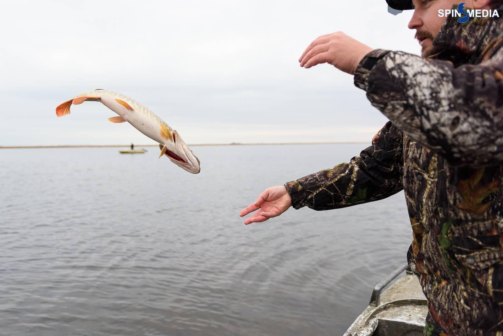 Рыбалка в Воронежской области: лучшие места на карте ТОП-10