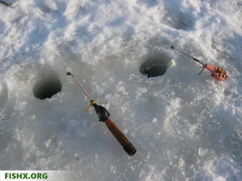 Как поймать уклейку на поплавочную удочку?