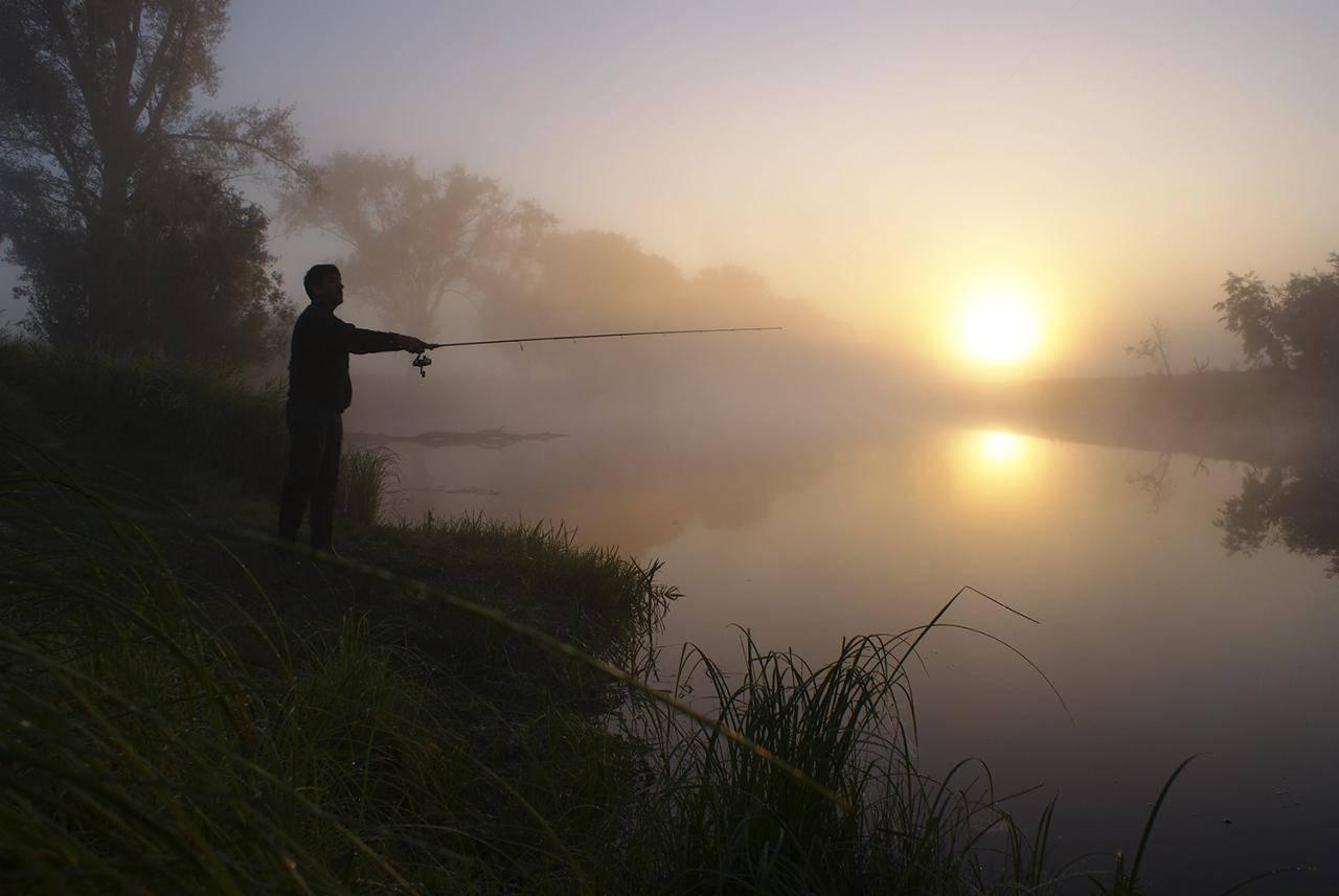 Ловля сома осенью: снасти, наживка, выбор места и техника ловли. видео