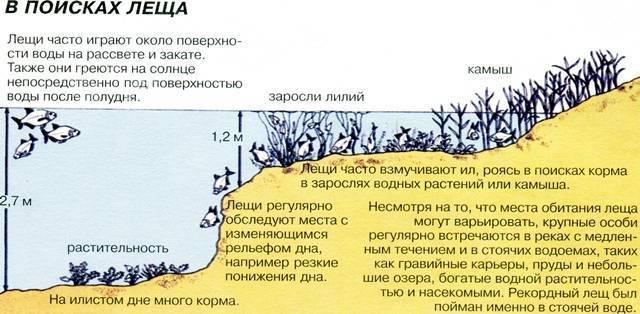 Глубина черного моря — полезная справка