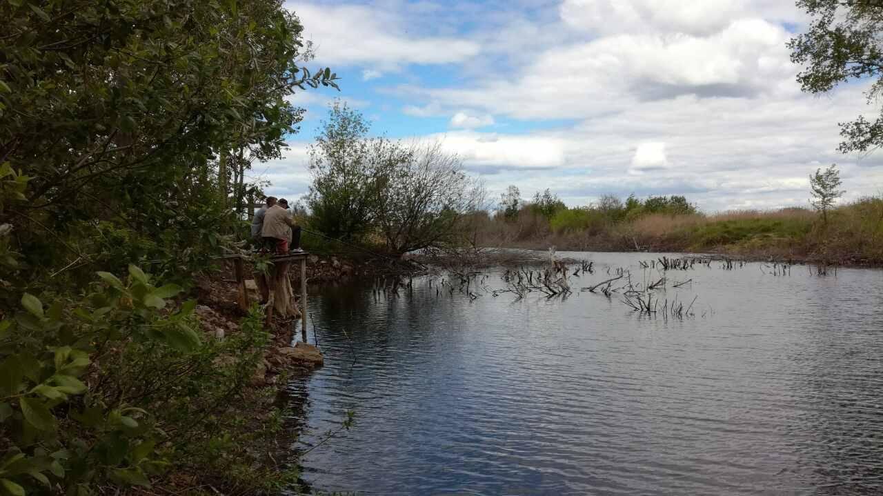 Рыбалка на волхове с берега — лучшие места для ловли, какие виды рыб водятся