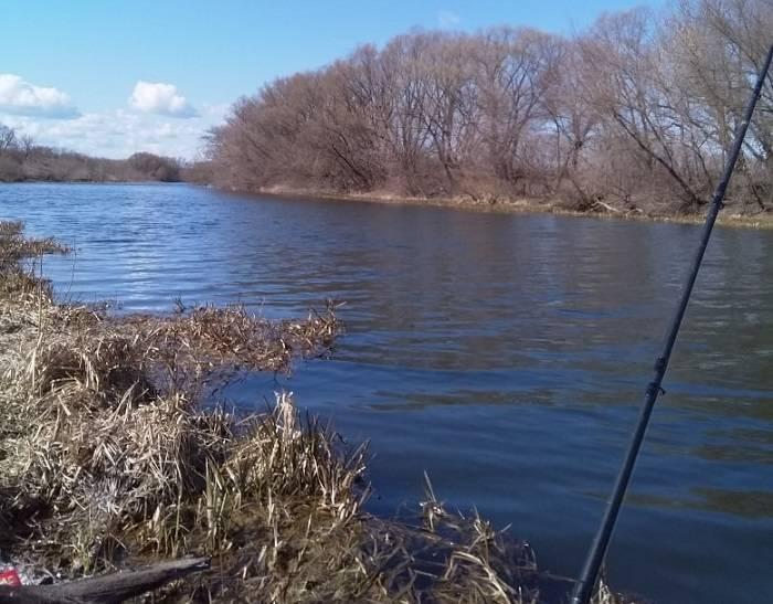 Рыбалка в липецкой области на реках, озерах, платных водоемах