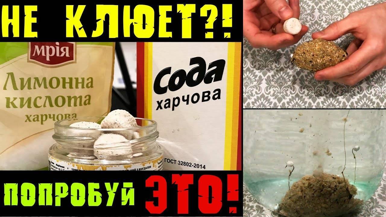 Каким активатором клева лучше всего приманивать рыбу?