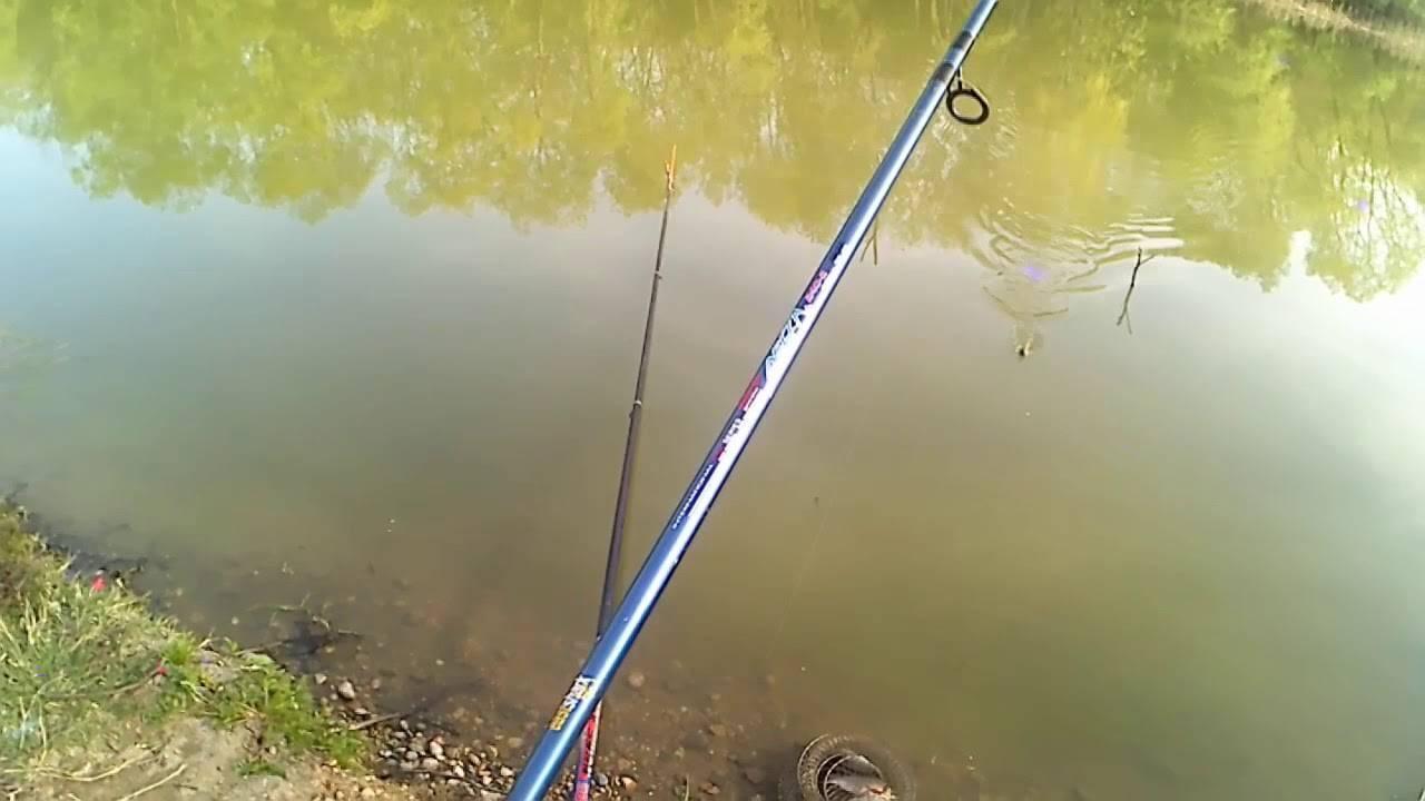 Рыбалка на карася – ловля на поплавочную удочку
