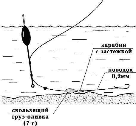 Ловля леща на поплавок с берега