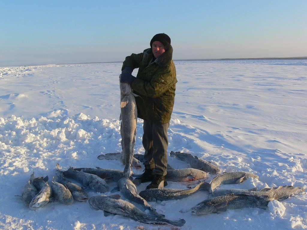 Озеро имандра мурманская область - семейный досуг