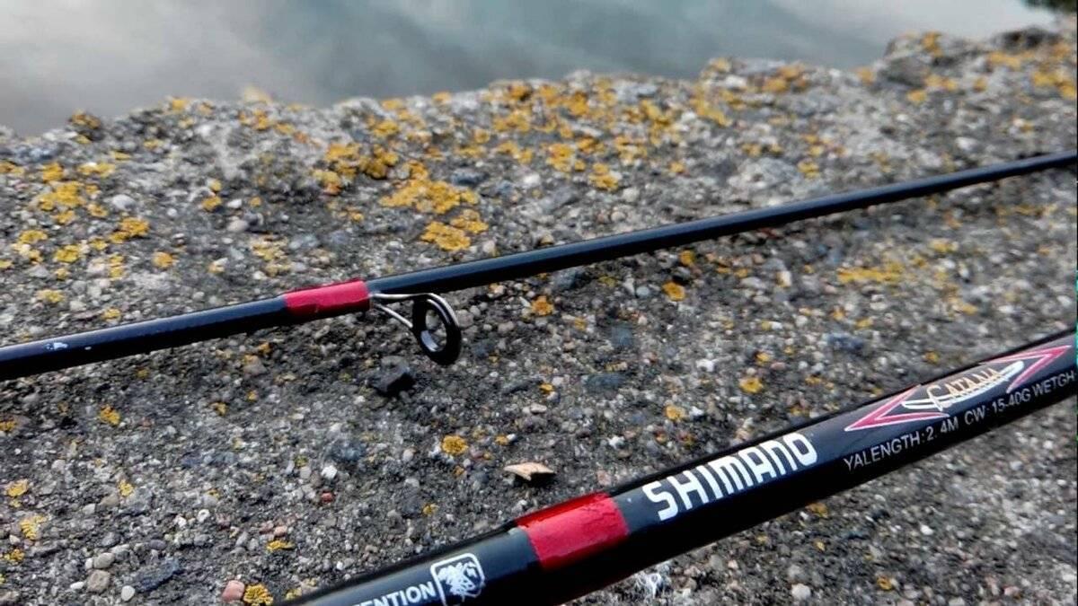 Рейтинг спиннингов для твичинга — 15 лучших моделей для успешной рыбалки