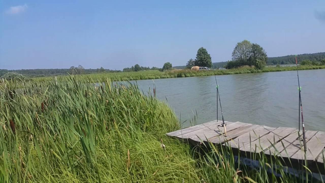 Рыбалка в муроме и районе: какую рыбу можно поймать, отзывы