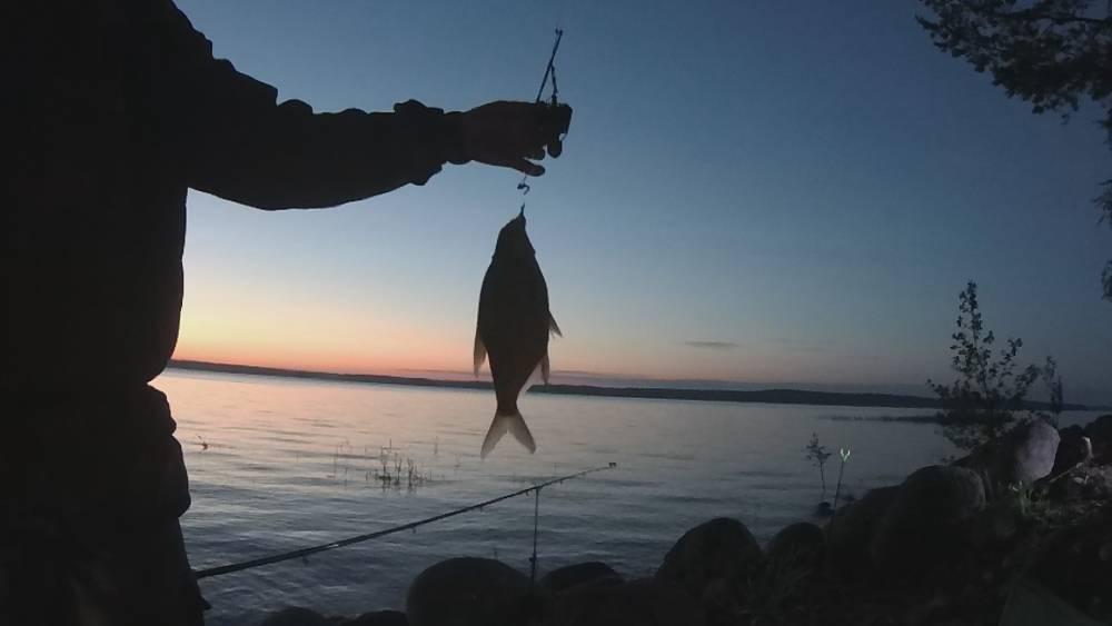 Какая рыба водится в вуоксе