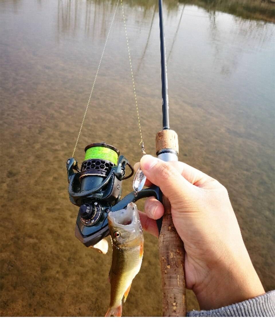 Рейтинг спиннингов для твичинга: 15 лучших моделей для успешной рыбалки