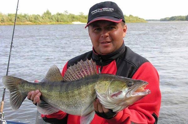 Рыбалка в беларуси: лучшие места для ловли, базы отдыха в белоруссии
