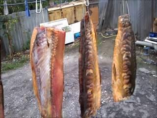 Как засолить леща? 22 фото как вкусно солить крупную рыбу для сушки и копчения в домашних условиях? как правильно готовить балык из леща?