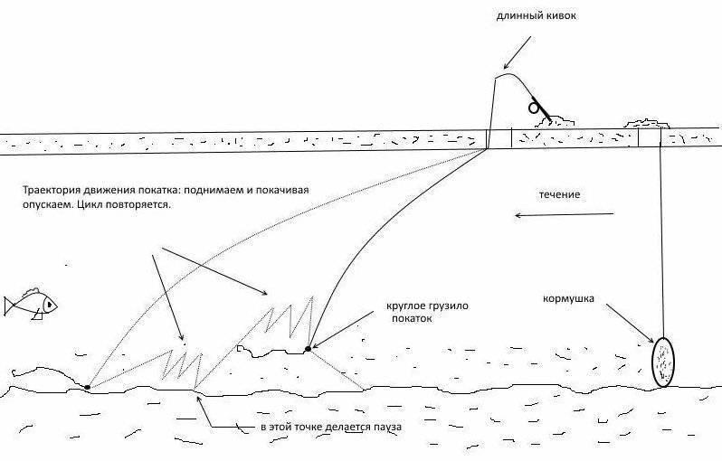 Азы рыбной ловли: что необходимо знать начинающему рыболову