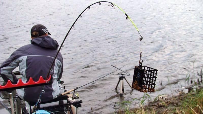 Ловля белого амура на фидер ночью - читайте на сatcher.fish