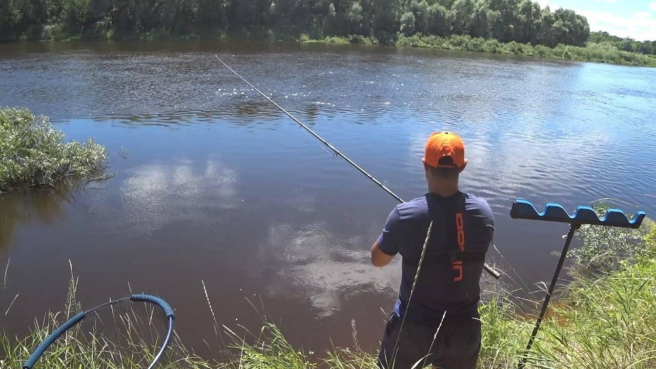На крючке: как перестать бояться и начать ловить рыбу
