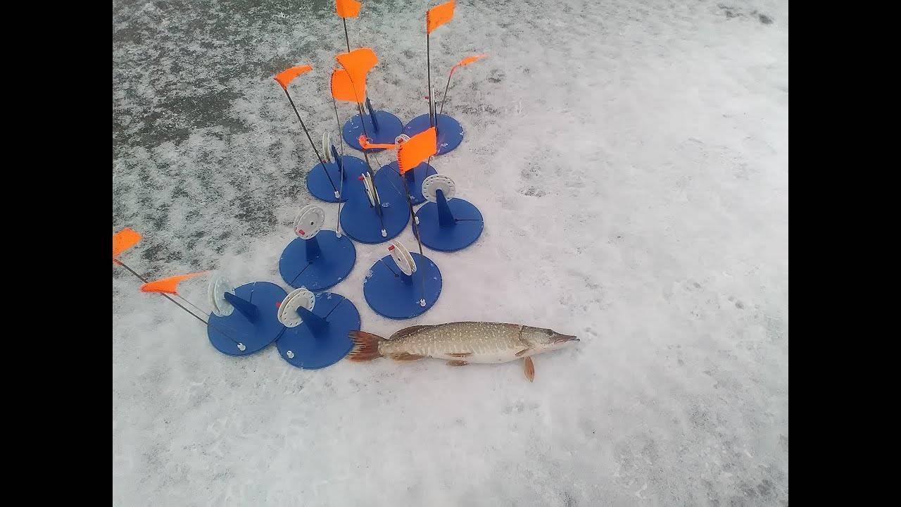 Щука на жерлицы : ловля зимой по первому и последнему льду: как ловить: как правильно ставить, схема оснастки, техника и тактика ловли
