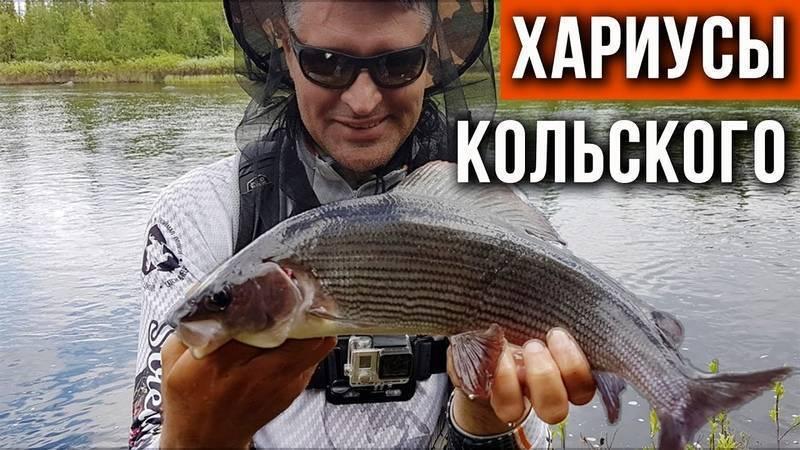 Рыбалка в мурманской области: лучшие места на карте топ-5