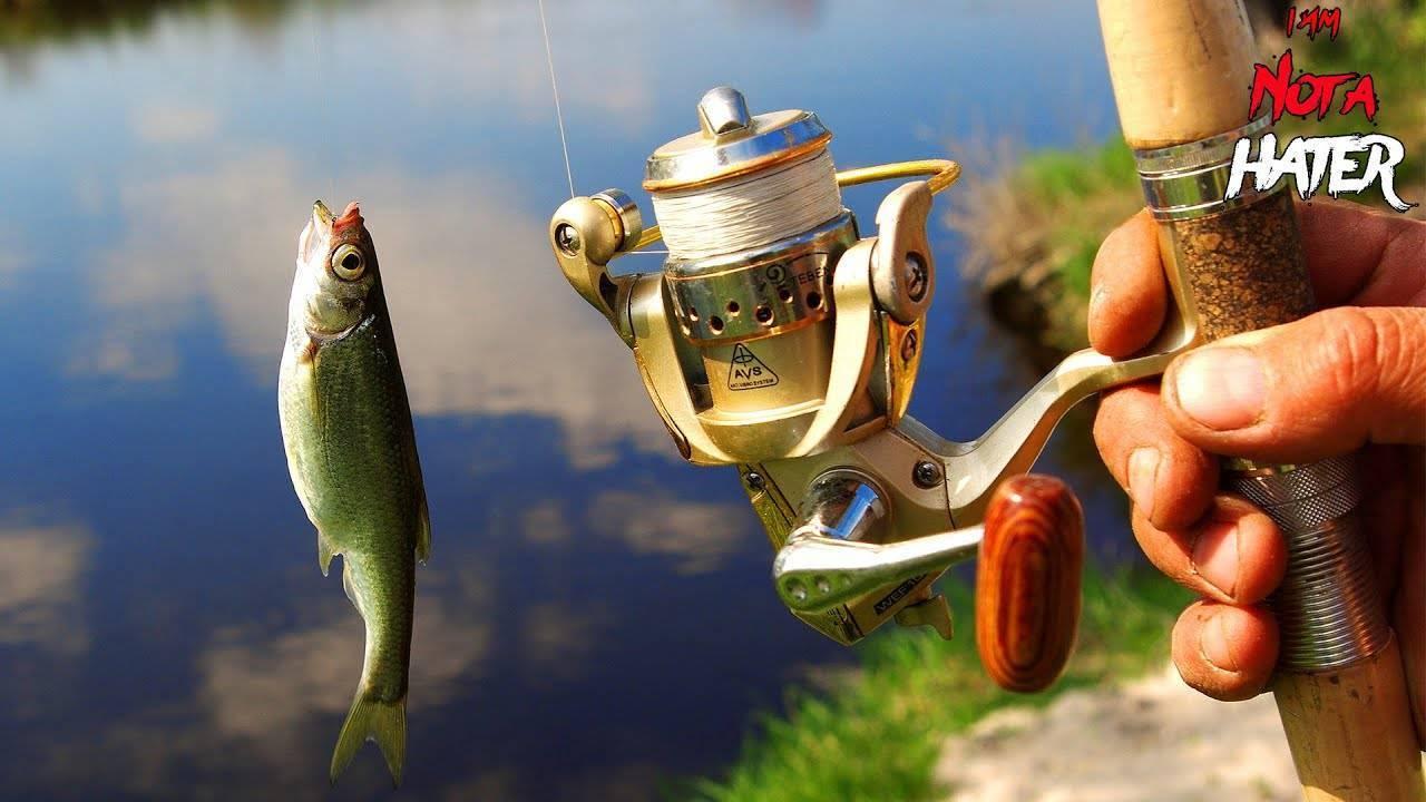 Рыбалка на таежных озерах томской области - читайте на сatcher.fish