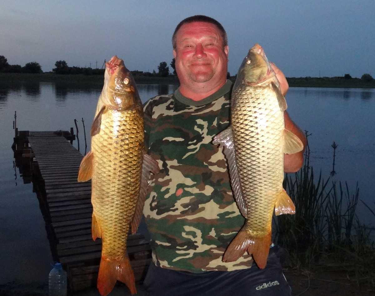 Астрахань: базы отдыха на берегу с рыбалкой - 20 лучших мест