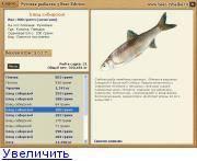 Рыба елец описание и фото - про рыбалку