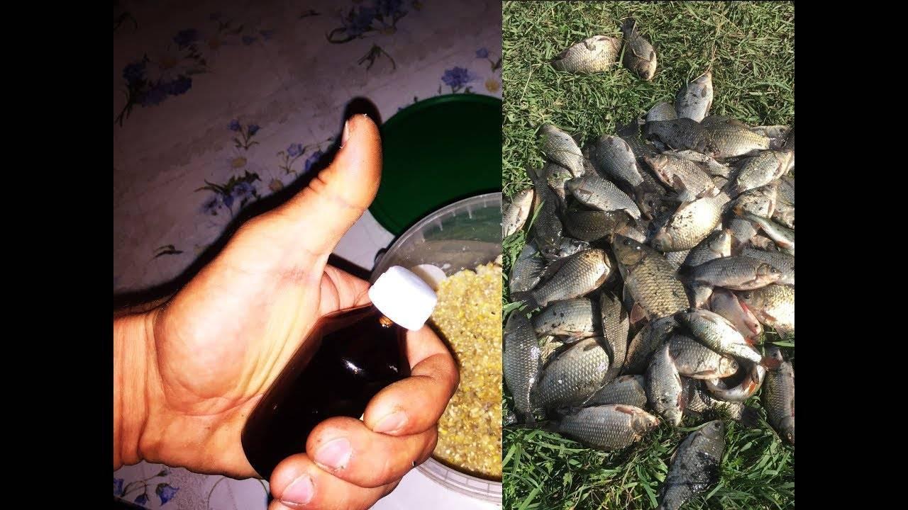 Рыба в реке — еще не в руке. выбираем ароматизаторы для карася