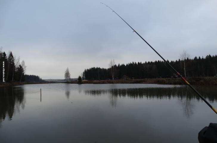 Места для рыбалки в владимирской области – платная и бесплатная рыбалка!
