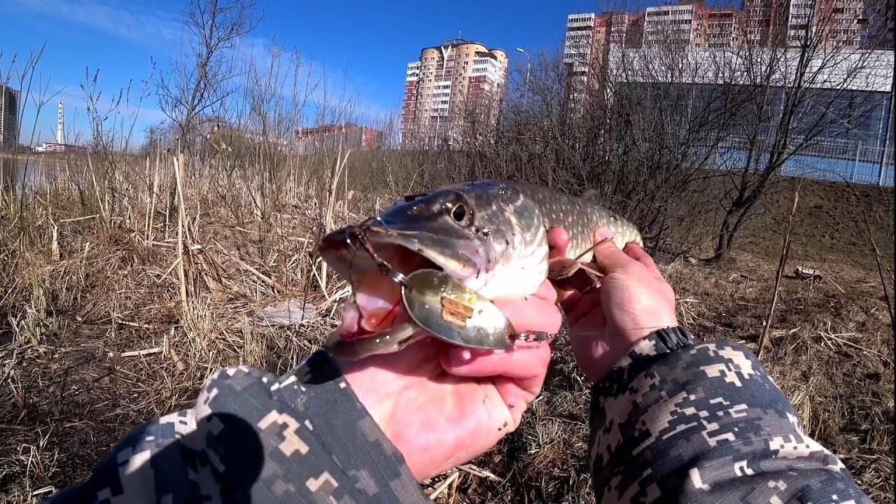 Рыбалка в сентябре — какая рыба ловится и где ее искать