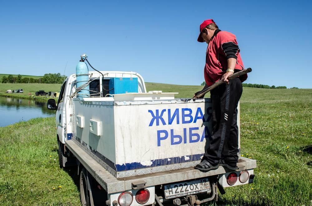 Бухгалтерская отчетность и фин. анализ фермерское хозяйство клецова за 2011-2019 гг. (инн 4250006041) — audit-it.ru