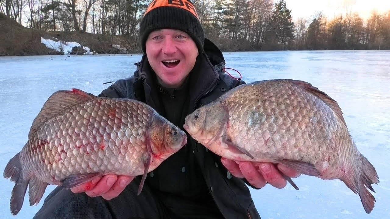 Ловля карася на пруду зимой   советы по выбору приманок и технике