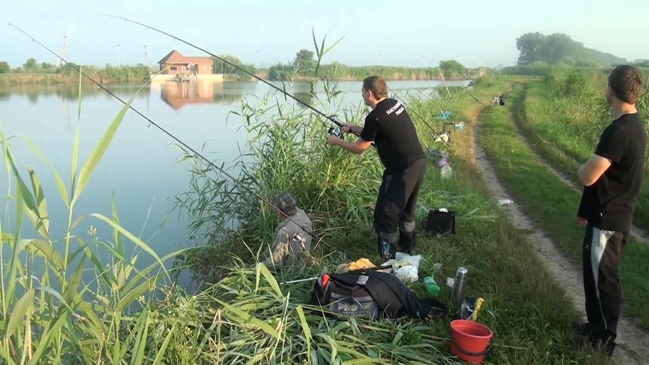Рыболовные базы краснодарского края — обзор услуг и цен