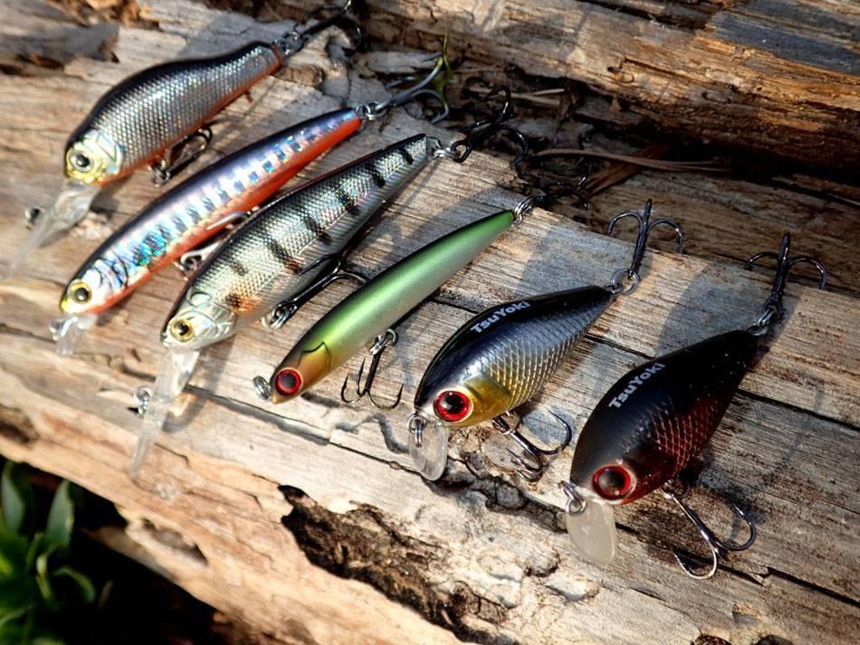 Разбираемся в воблерах. как выбрать, типы и разновидности – рыбалке.нет
