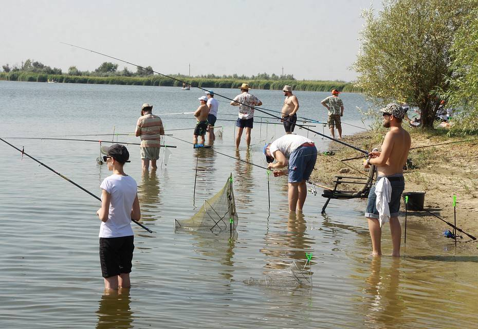 Рыбалка в самарской области: лучшие места на карте топ-10