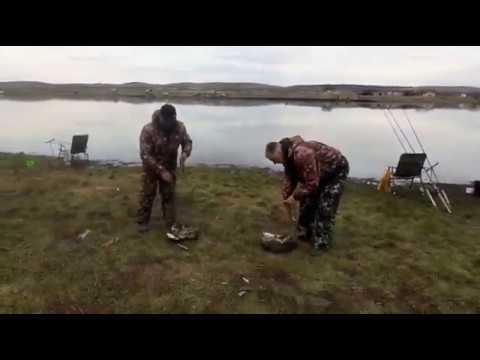 Платная рыбалка в ленинградской области: цены на базы и туры для платной рыбалки на озерах и реках области