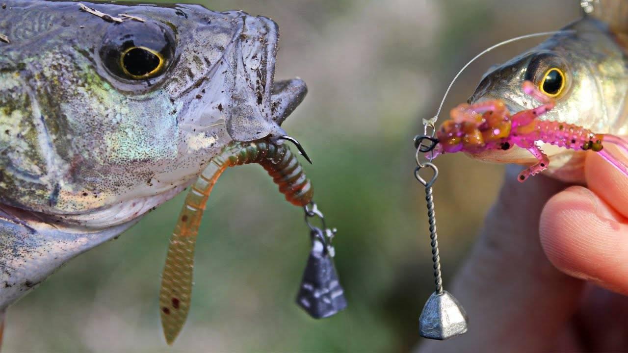 Аттрактант для рыбалки (видео 73)   воздействие на рыбу
