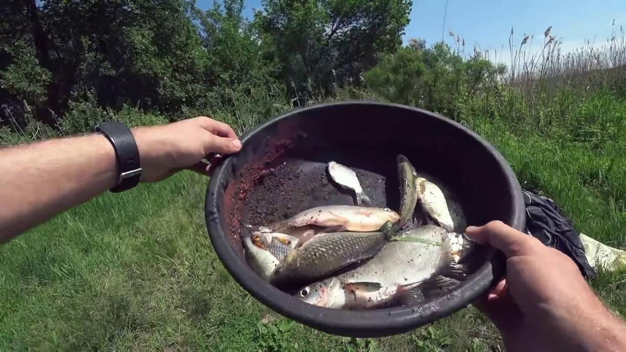 Каша для рыбалки на пружину: как приготовить, лучшие рецепты