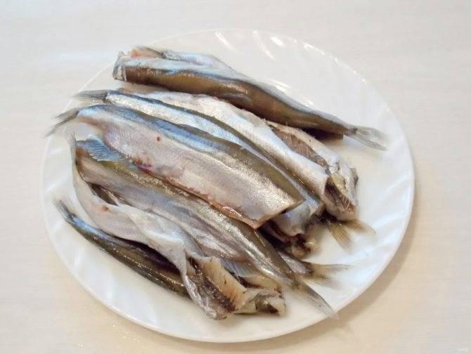Шпроты из речной рыбы в домашних условиях: рецепт с фото пошагово