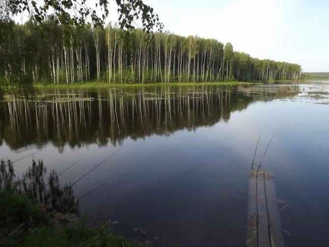 Рыбалка в орловской области: какая рыба водится в водоемах, список бесплатных и платных мест, реки и озера