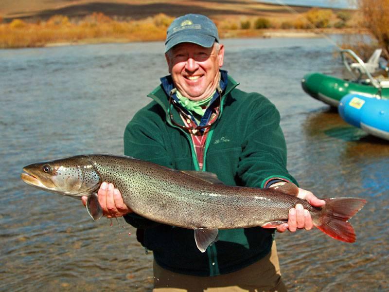 Рыба таймень: среда обитания, истребление, фото